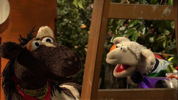 Sommerfest in der Möhre. Wolle und Pferd haben alles ganz genau geplant: Luftschlangen, Möhrenauflauf und Pferde-Schlager soll es geben. | Rechte: NDR/Studio Hamburg