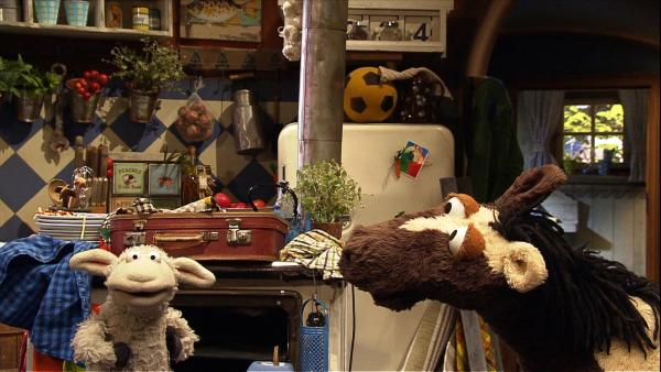 Pferd und Wolle haben sich mit Finchen zum Kochen verabredet. | Rechte: NDR/Studio Hamburg
