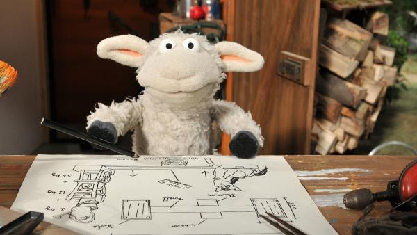 Wolle wiegt Pferd und stellt fest, dass sein Freund ganz schön schwer geworden ist. | Rechte: NDR/Uwe Ernst