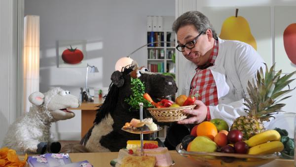 Vielleicht kann der Ernährungsexperte Dr. Schmalhans (Oliver Kalkofe) helfen, dass Pferd wieder dünner wird... | Rechte: NDR/UWE ERNST