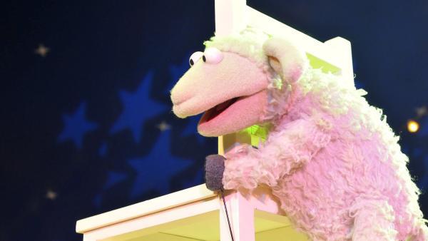 Wolle und Pferd sehen ein Zirkus-Plakat mit Artisten, die hoch oben auf Stühlen balancieren. Das können wir auch, denken Wolle und Pferd und machen sich auf zum Zirkus... | Rechte: NDR/UWE ERNST