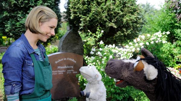 Als Pferd und Wolle beschließen, Finchens Opa zu finden und ihn zurück zu holen, damit Finchen nicht länger traurig ist, gehen sie zum Friedhof... | Rechte: NDR/UWE ERNST