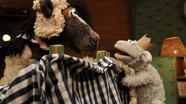 Wolle und Pferd proben für eine Theaterpremiere: Pferd spielt Rapunzel und Wolle den Prinz. | Rechte: NDR/UWE ERNST
