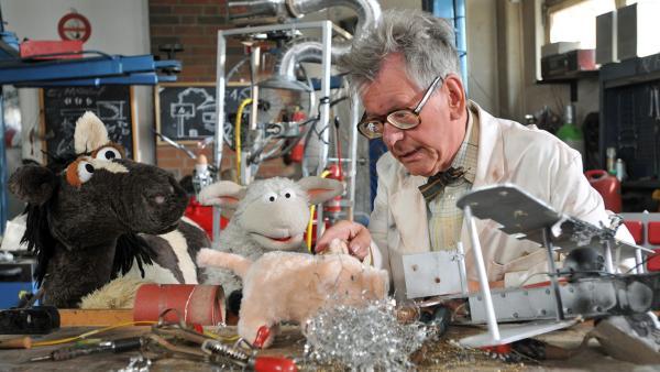 Pferd und Wolle beim Erfinder Professor Schlotter   Rechte: NDR / Uwe Ernst