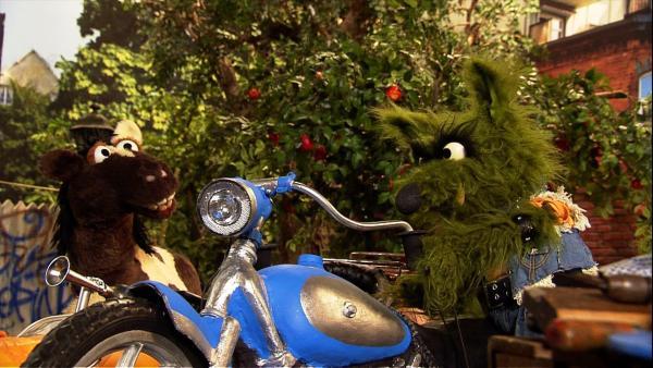 Pferd schafft es nicht, das Möhrtorrad alleine in die Garage zu schieben. | Rechte: NDR Foto: Screenshot