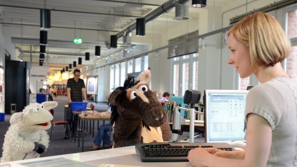 Wolle und Pferd in der Bücherei | Rechte: NDR Foto: Uwe Ernst
