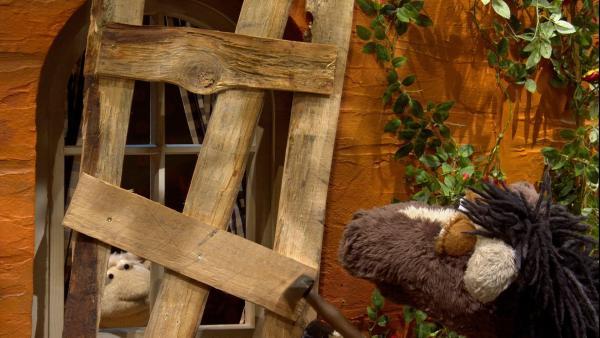 Folge 151: Pferd vernagelt das Fenster der Möhre zum Schutz vor dem Wombie. | Rechte: NDR/Sesame Workshop