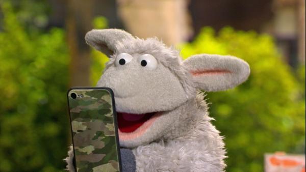 Folge 141: Wolle ist total begeistert von seinem neuen Handy. | Rechte: NDR/Sesame Workshop