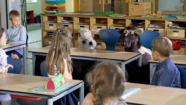 Wolle und Pferd mit Kindern in der Schule. | Rechte: NDR/Thorsten Jander Foto: Thorsten Jander