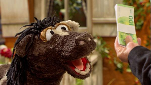 Folge 145: Pferd ist begeistert, dass er so viel Geld von dem Makler für die Möhre bekommt. | Rechte: NDR/Sesame Workshop