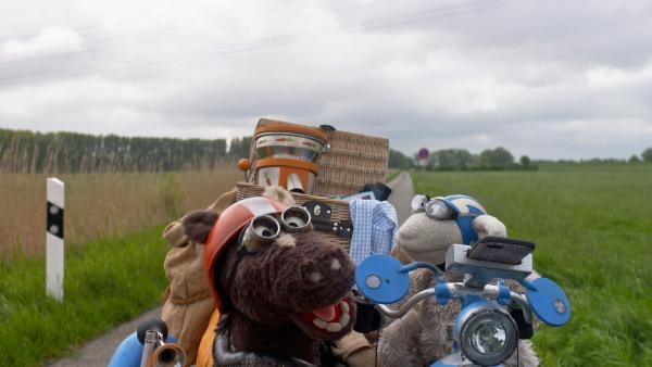 Folge 146: Mitten auf der Straße bleibt das Möhrtorrad plötzlich stehen. | Rechte: NDR/Sesame Workshop