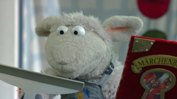 F. 116 Das besondere Buch: Wolle und Pferd dürfen Wolfs Lieblingsmärchenbuch leihen. | Rechte: NDR Foto: Screenshot