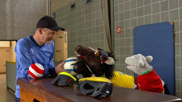 Folge 144: Der Trainer erklärt Wolle und Pferd, wie man Blindenfußball spielt. | Rechte: NDR/Sesame Workshop