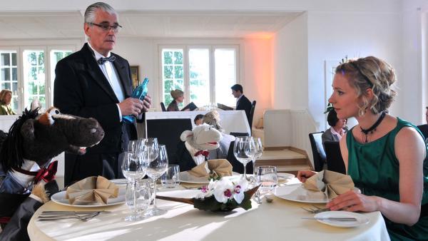 Pferd und Wolle sind in einem feinen Restaurant | Rechte: NDR / Uwe Ernst