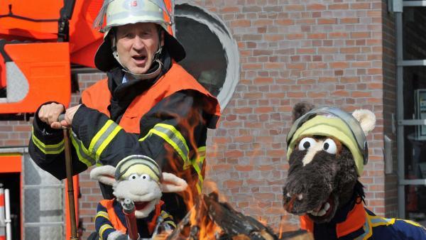 Peter Lohmeyer als Feuerwehrmann mit Pferd und Wolle | Rechte: NDR / Uwe Ernst