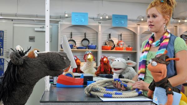Pferd und Wolle in einem Laden | Rechte: NDR / Uwe Ernst