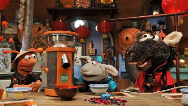 Finchen, Wolle und Pferd in einem chinesischen Teehaus | Rechte: NDR / Uwe Ernst