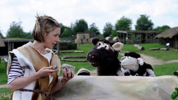 Wolle und Pferd lassen sich die Werkzeuge der Steinzeit erklären | Rechte: NDR Foto: Uwe Ernst
