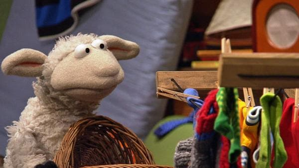 Wolle steht am Kleiderschrank | Rechte: NDR / Uwe Ernst