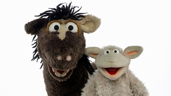 WOLLE und PFERD aus der Sesamstraße | Rechte: NDR/Sesame Workshop