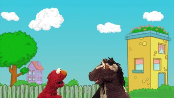 Elmo und Pferd entdecken tolle Wolkenbilder in der Sesamstraße. | Rechte: NDR