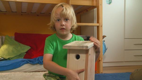 Marin hat für die Vögel in seinem Garten einen Nistkasten gebaut. | Rechte: NDR