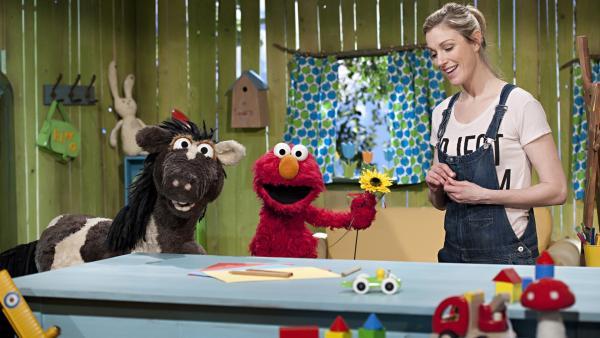 Elmo und Pferd haben eine Überraschung für Julia. | Rechte: NDR/SesameWorkshop