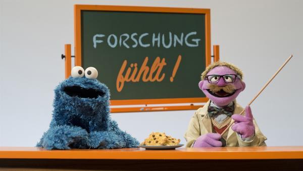 Erklären Hoffnung: Krümel und der Professor. | Rechte: NDR/Thorsten Jander