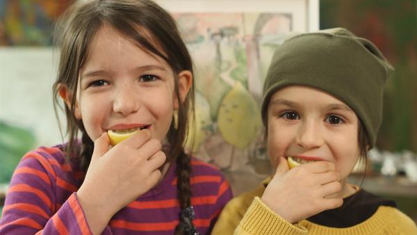 Mimi und Leo mögen Zitronen – auch gemalte! | Rechte: NDR/Astrid Reinberger