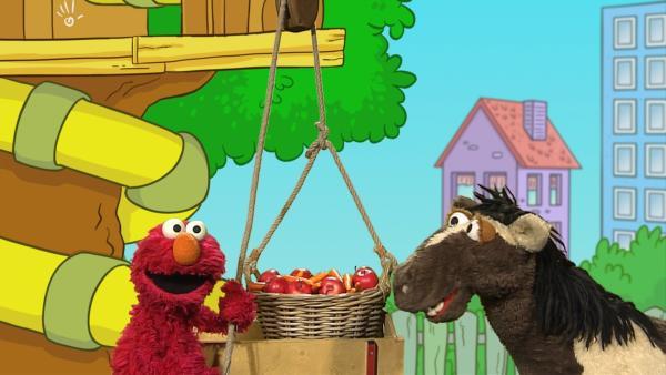 Elmo (l.) und Pferd (r.) rätseln, wie sie einen schweren Kob ins Spielehaus bekommen. | Rechte: NDR
