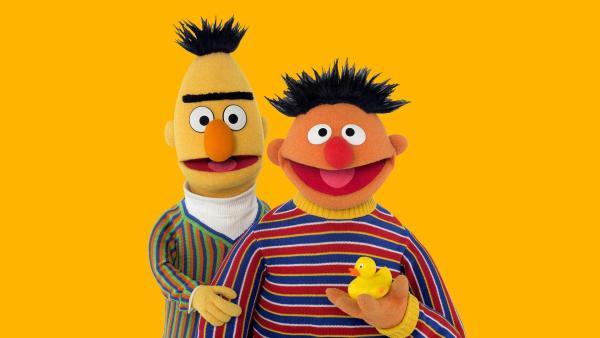 Ernie und Bert erklären Magnetismus.   Rechte: NDR