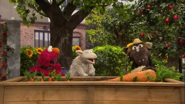 Elmo und Pferd wollen Möhren ernten. Dafür brauchen sie aber Wolles Hilfe. | Rechte: NDR