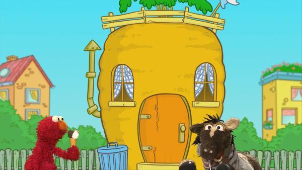 Ernie und Bert möchten gesund bleiben, Elmo und Pferd treiben Sport und Krümelmonster nimmt an einem Wettkampf teil. | Rechte: NDR