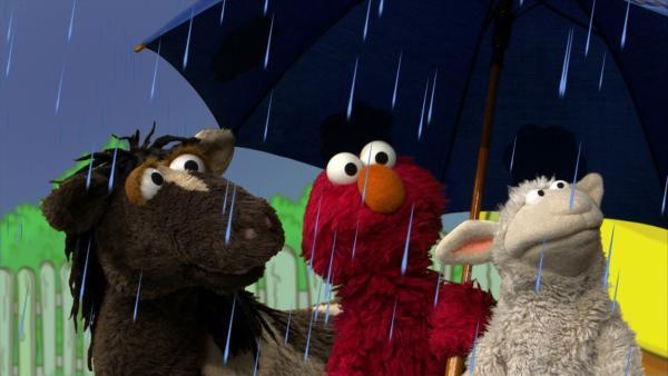Pferd, Elmo und Wolle (v.l.n.r.) singen das Regenlied. | Rechte: NDR