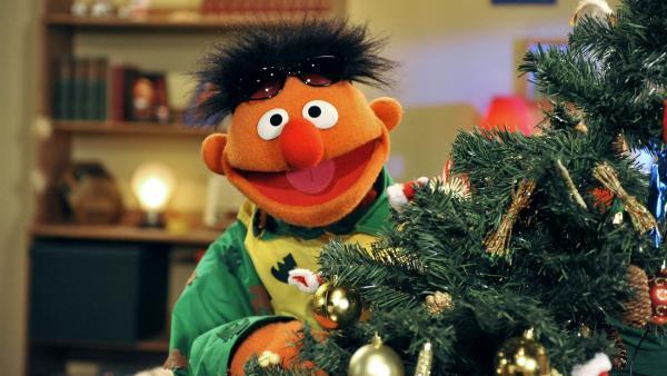 Ernie freut sich auf das Weihnachtsfest. | Rechte: NDR/Studio Hamburg/Boris Laewen