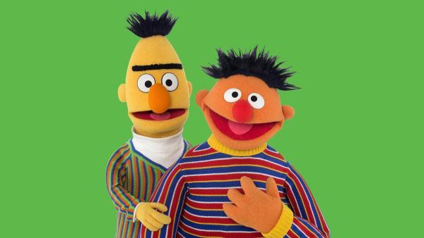 Links der gelbe Bert mit blau,orange, grün gestreiftem Pulli, rechts der orangene Ernie mit rot, blau, weiß, gelb gestreiftem Pulli vor grünem Hintergrund.   Rechte: NDR