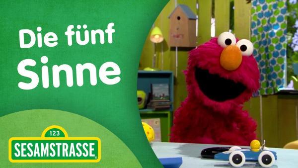 Folge 2880. Die fünf Sinne - Thumbnail mit Elmo | Rechte: NDR