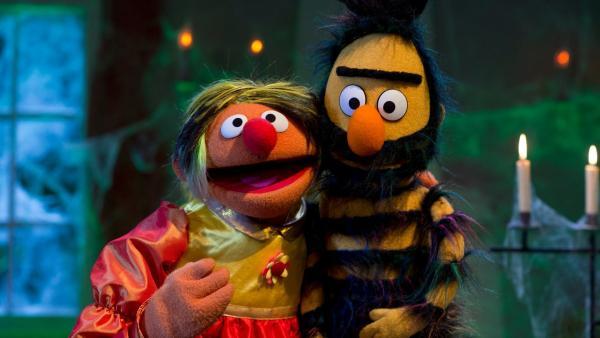 Ernie als  Schöne, Bert als Biest | Rechte: NDR Foto: NDR