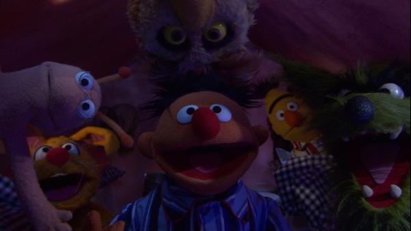 Ernie, Bert, Finchen und mehrere Tiere gucken irgendwo hin.   Rechte: NDR/Sesame Workshop Foto: NDR