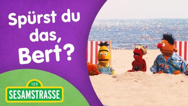 Sesamstraßen Logo, Ernie und Bert am Strand   Rechte: NDR Foto: Grafik