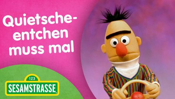 Folge 2884. Quitscheentchen muss mal - Thumbnail mit Bert | Rechte: NDR