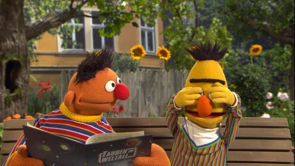 Ernie liest Bert ein Buch vor. Bert hält sich die Augen zu. | Rechte: NDR/Sesame Workshop Foto: NDR
