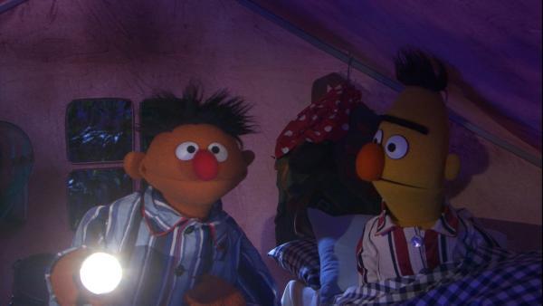 Ernie und Bert sitzen in einem Zelt | Rechte: NDR/Sesame Workshop Foto: NDR