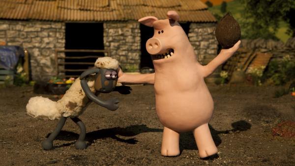 Alle wollen die Kokosnuss. Doch wer kann sie knacken? | Rechte: WDR/Aardman Animation Ltd./BBC