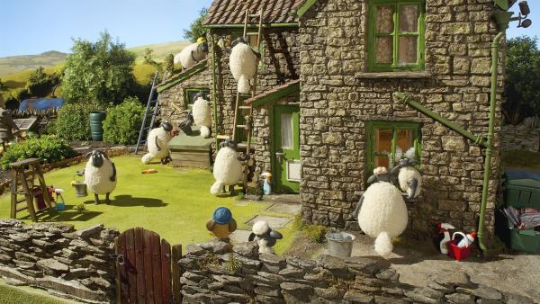 Für Shaun und Bitzer springen die Schafe auch mal als Fensterputzer ein. | Rechte: WDR/Aardman Animation Ltd./BBC