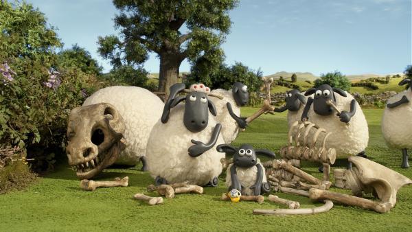 Die Schafe machen auf ihrer Weide einen gewaltigen Fund.   Rechte: WDR/Aardman Animation Ltd./BBC
