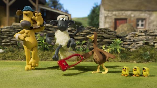 Shaun erfährt: Mit der Entenmama ist nicht gut Kirschen essen. | Rechte: WDR/Aardman Animation Ltd./BBC