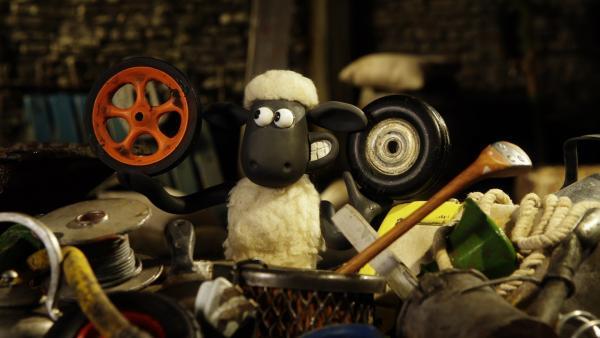 Altes Gerümpel bringt Shaun auf die besten Ideen.   Rechte: WDR/Aardman Animation Ltd./BBC