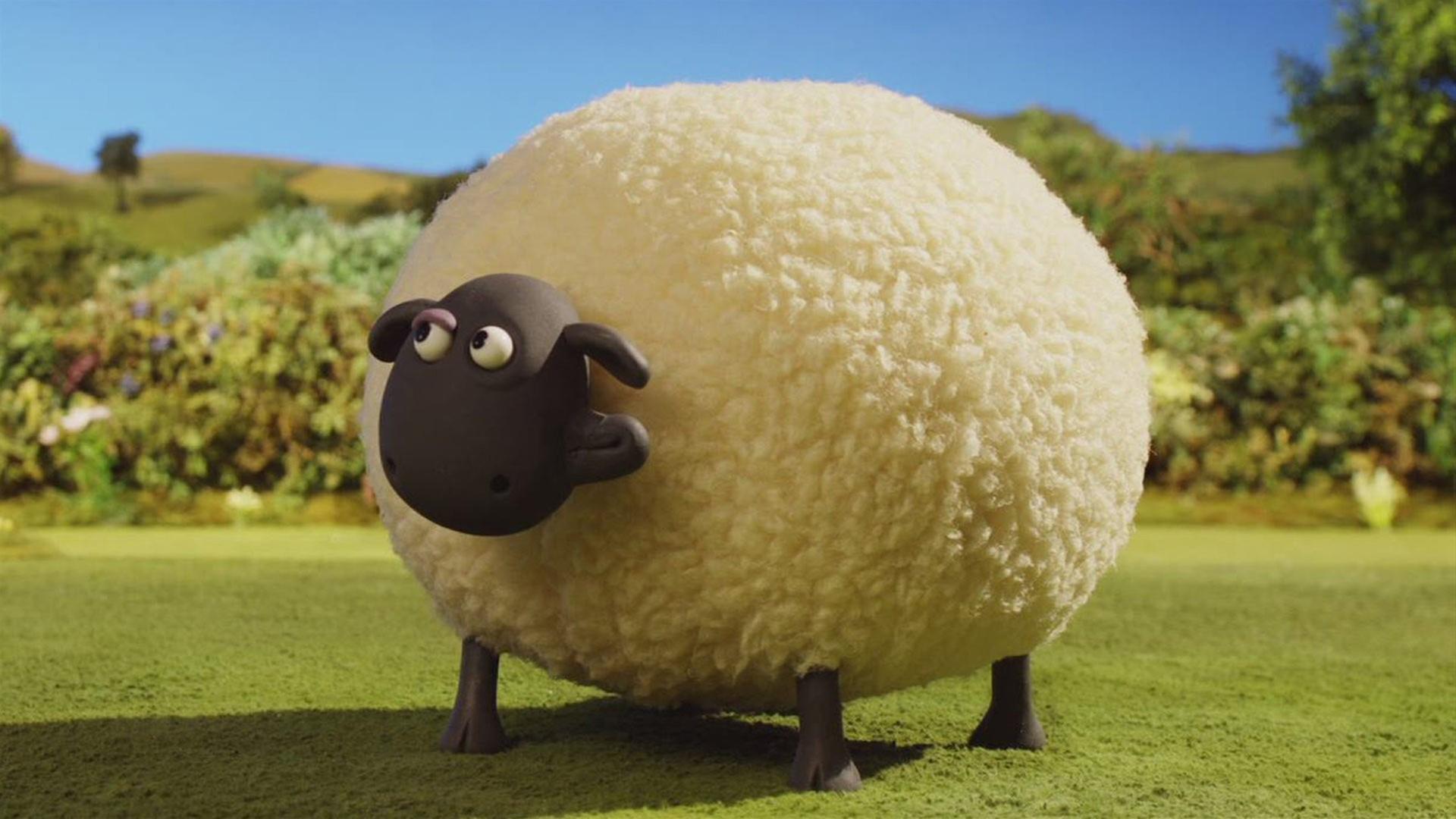 Shaun Das Schaf Dickes Schaf