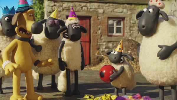 Timmy hat Geburtstag und alle wollen mitfeiern.    Rechte: © KiKA